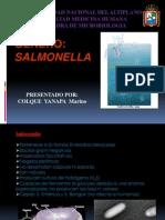 GENERO Salmonella
