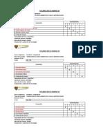 Formato de Syllabus 2013