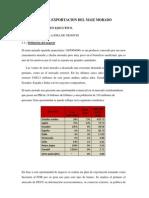 Plan de Exportacion Del Maiz Morado