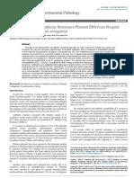 Isolation of a Novel Antibiotic Resistance Plasmid DNA from Hospital Isolates of Pseudomonas aeruginosa