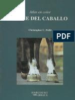 30742982 Atlas El Pie Del Caballo