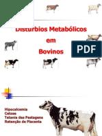 DISTÚRBIOS METABÓLICOS  BOVINOS