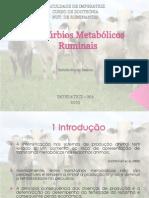 Distúrbios_Metabólicos_Ruminais