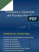 Principios y Garantías del Proceso Penal