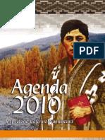 Agenda Inspectorial 2010 (ARS)