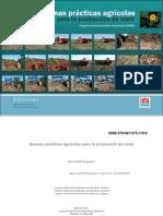 Buenas prácticas agrícolas para la producción de maní