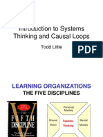 Systems Causal Loops