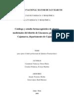 Tesis QF Catálogo y Estudio farmacognóstico de plantas medicinales en LLanacoraCajamarca