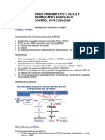Circovirus Porcino Tipo 2 Y Enfermedades Asociadas