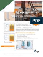REX Piles ENG Print