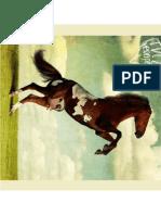 Master Program in Advertising at New Bulgarian University Horse