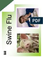 Swine Flu - Prof. Lico Reis