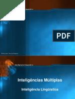 inteligencia-linguistica-1212526803687335-9