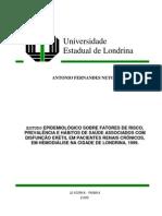 Tese Mestrado Antonio Fernandes Neto
