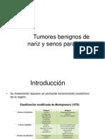 Tumores Denariz y Senos Paranasales