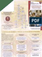 t-sicenut.pdf
