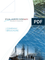 Polaris Anserv Company Profile ROMANIA