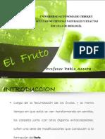 Fruto - Pablo Acosta