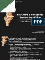 T2_Tronco_Encefalico