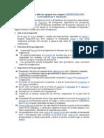 Definiciion y Objetivos Del Presupuesto