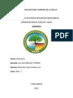 informe de silvicultura Nº 3.docx