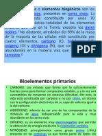 BIOLOGÍA EXPOSICIÓN  3