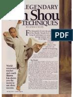 6 Legendary Techniques of Sanshou - 2004