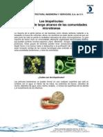 Biopeliculas Final