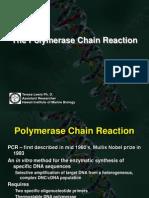PCR Lecture