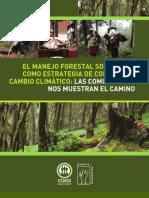 El Manejo Forestal y Cambio Climatico CCMSS