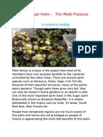 Sugar Palm –  The Multi Purpose Tree