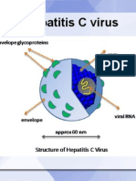 HCV - hepatitis c virus