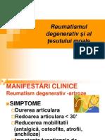 Reumatismul degenerativ