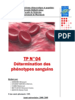 groupage sangins