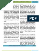 UNIDAD II 2. VIRUS, TEORÍA CELULAR, CÉLULAS Y BACTERIAS - UNIDAD 2 FUNDAMENTOS BIOLÓGICOS DE LA MEDICINA.