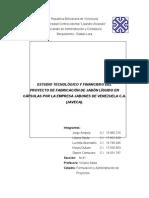 PROYECTOJAVECAANALISISTECNOLOGICOYFINANCIERO[2]