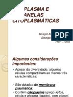 CITOPLASMA E ORGANELAS CITOPLASM�TICAS- 29-09