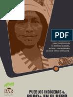 Pueblos Indígenas y REDD en el Peru