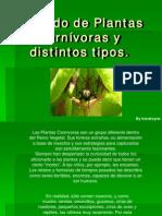 Guia Plantas Carnivoras