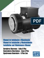 Mantenimiento e Instalación Generadores WEG 1