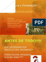 La Agricultura y Forestación Orgánica (1)