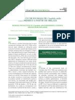 Tema 3 Produccion de Biomasa