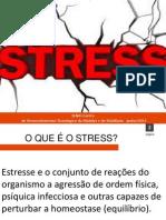 SLIDE DO TRABALHO STRESS - Cópia