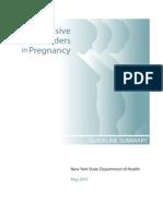 2013 Hdp Guideline Summary
