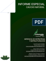 Files_contenido_Informe Caucho Marzo 2013