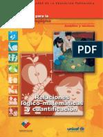 24972457-Relaciones-logico-matematicas-y-cuantificacion.pdf