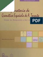 Test Exploratorio de Gramática Española (STSG)