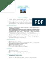 Informe de Ejecucion Proyecto Ambiental