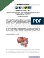 Interpretación de QUIMICA SANGUINEA VETERINARIA.pdf