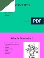 Dermatitis b